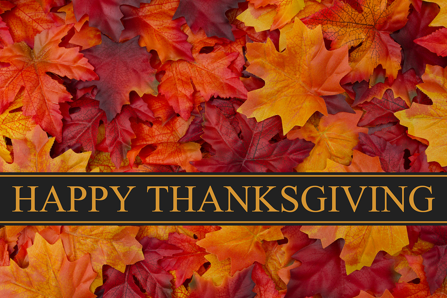 Happy Thanksgiving Greeting Fall Leaves Background and text Happy Thanksgiving